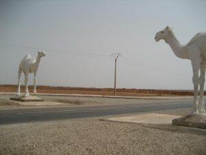 La puerta del Sahara